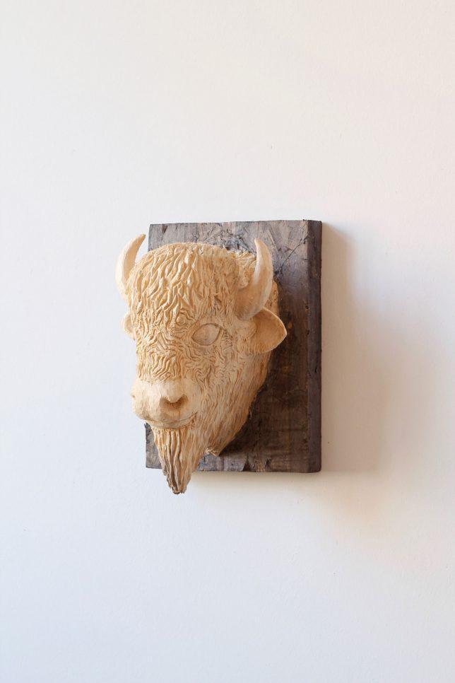 Jan Thomas, Trophäe-Bison, 2017, Pappelholz, Lasur, 34-23-25 cm